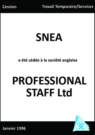 snea-professional-staff